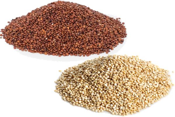 Red Quinoa vs White Quinoa 1