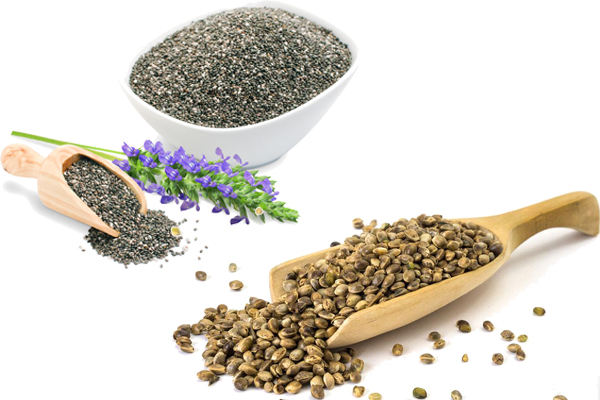 Chia Seeds vs Hemp Seeds 1